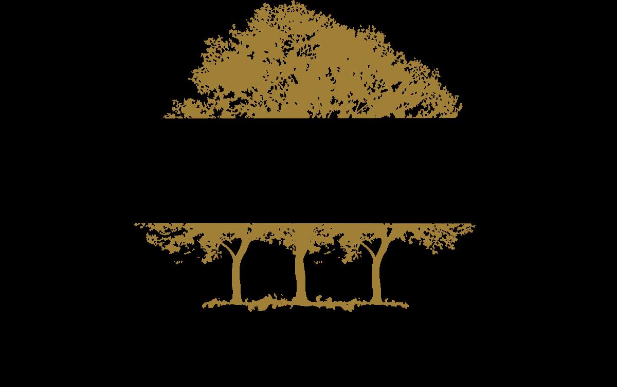 Market Share Canopy Growth Corporation